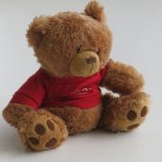 a_bear4